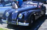 afbeelding van Jaguar